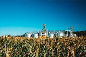 How Primetics' Gold Grain Trading Software Can Help Your Business Navigate the Volatile Grain Market