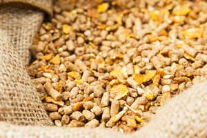 How Software Supports Feed Management