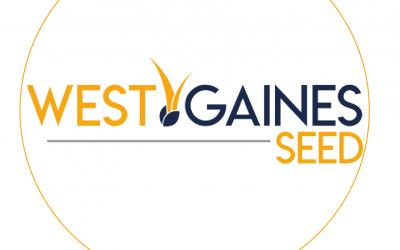 West Gaines Seed Testimonial