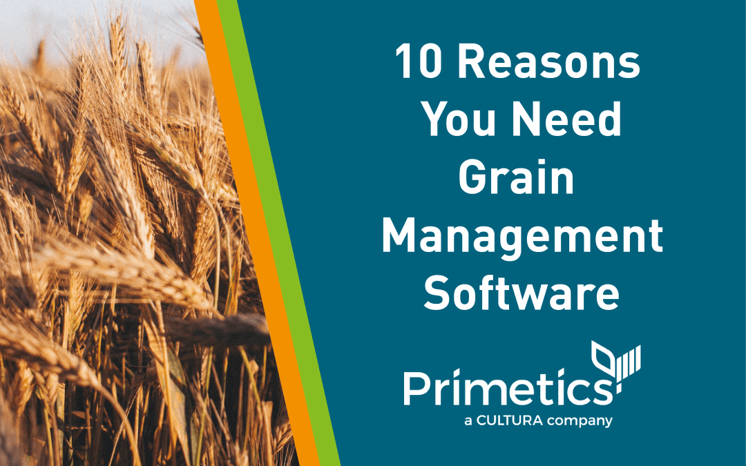 10 Reasons You Need Grain Management Software